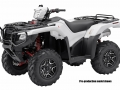 Honda FourTrax Foreman Rubicon Deluxe DCT EPS - TRX500FA7