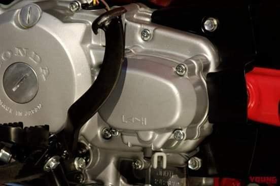 2021 Honda CT125 Low Range / High Transmission | Hunter Cub