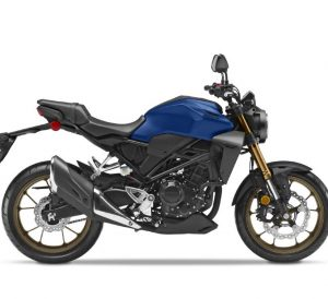 2021 Honda CB300R ABS Review / Specs | Price, Release Date, Changes, Colors + More!
