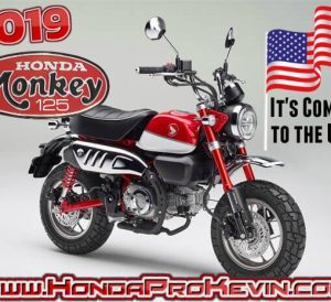 Official 2019 Honda Monkey 125 USA Release | Review / Specs: Price, Colors, MPG, HP & TQ Performance Info + More on this all new 125cc Motorcycle from Honda...