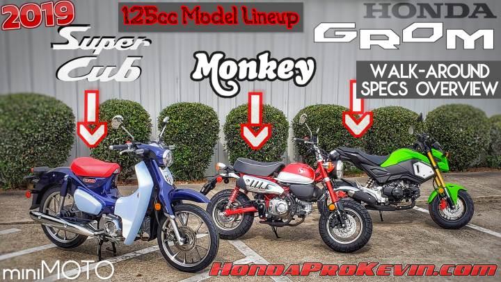 Comparison Review: 2019 Honda Super Cub VS Monkey VS GROM 125 cc Motorcycles